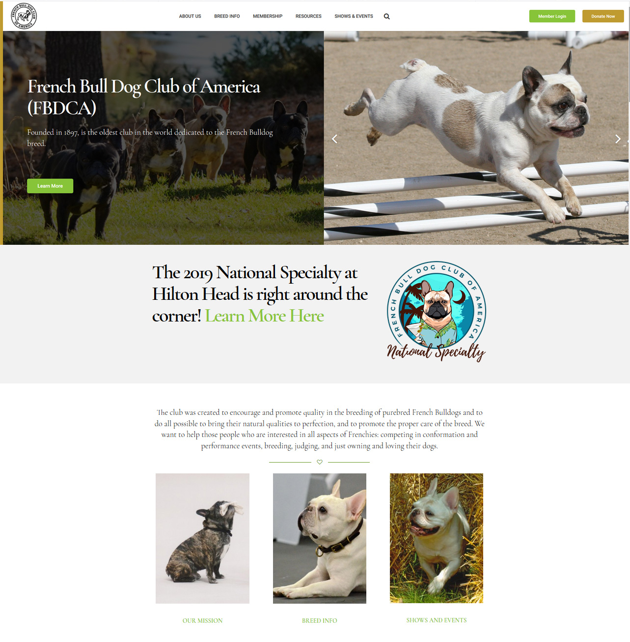 French Bulldog Club of America